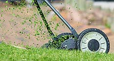 Photo: Hand Lawn Mower (Reel) by Ulrike Mai