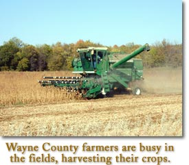 Wayne County farmers are busy in the fields, harvesting their crops.