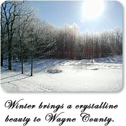 Winter brings a crystalline beauty to Wayne County.