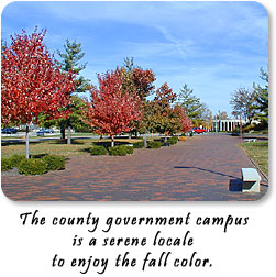 The county government campus is a serene locale to enjoy the fall color.