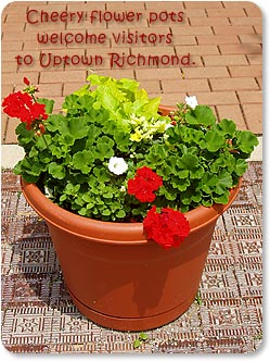 Cheery flower pots welcome visitors to Uptown Richmond