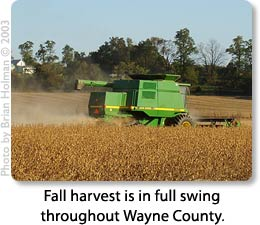 Fall harvest is in full swing throughout Wayne County.