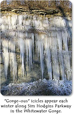 """Gorge-ous"" icicles appear each winter along Sim Hodgins Parkway in the Whitewater Gorge."