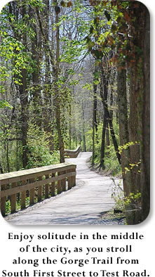 Enjoy solitude in the middle of the city as you stroll along the Gorge Trail from South First Street to Test Road.