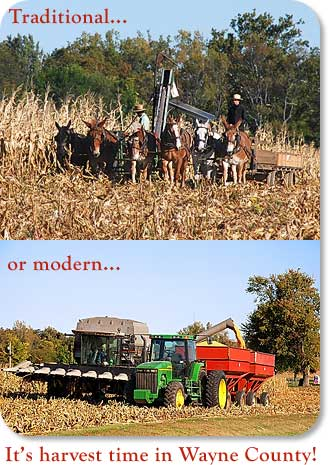 Traditional...or modern, it's harvetst time in Wayne County!