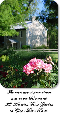 The roses are at peak bloom now at the Richmond All America Rose Garden in Glen Miller Park.