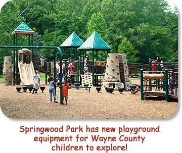 Springwood Park has new playground equipment for Wayne County children to explore!