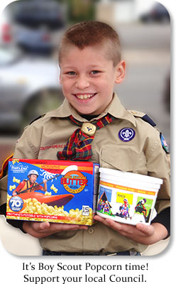 It's Boy Scout Popcorn time!  Support your local Council.