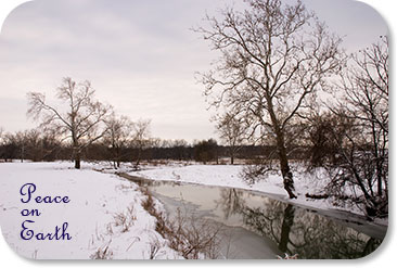 Peace on Earth (photo of Whitewater River and snowy pasture)