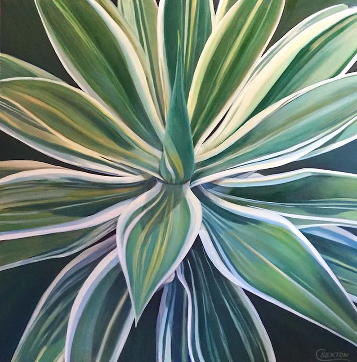 Supplied Image: Proud Agave by Carol Sexton