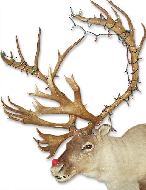 The story behind rudolph the red-nosed reindeer