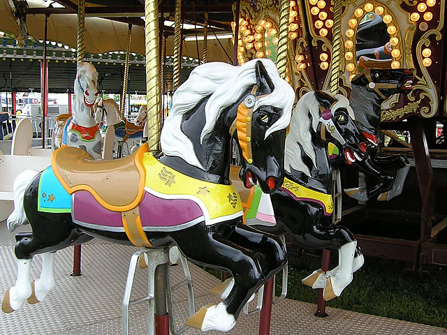Equestrian Events at the Wayne County, Indiana 4-H Fair